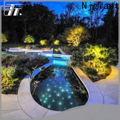 Njgiant fiber optic christmas lights series on sale