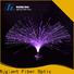 Njgiant best price fiber optic light kit from China for sale
