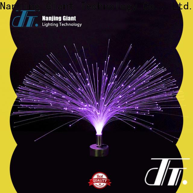 Njgiant fiber optic decorative lighting supplier for sale