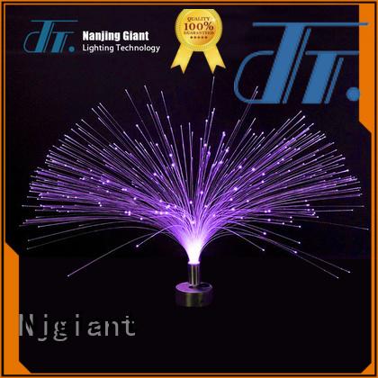professional fiber optic swimming pool lights illuminator